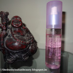 Lakme Dual Action Make-up Remover- Review