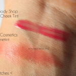 benefit benetint vs tbs lip and cheek tint