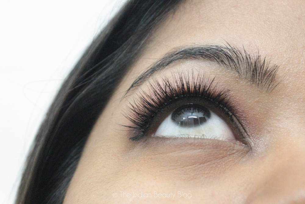 esqido lashes unforgettable review
